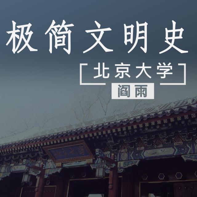 北京大学阎雨《极简文明史》